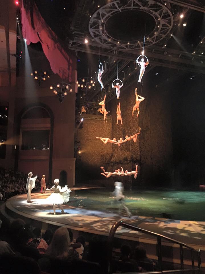 Show O Cirque du Soleil.jpg